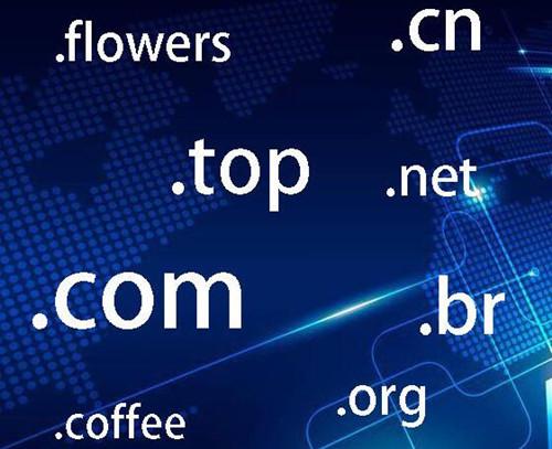 企业选择域名